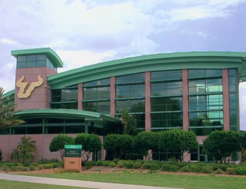 USF Remodeling